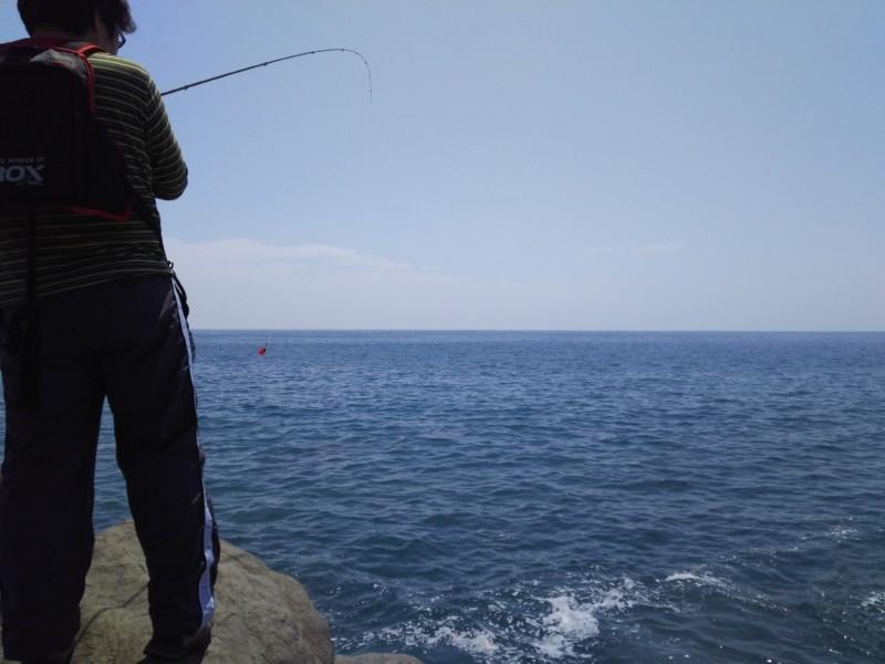 釣り in 安芸市 ⇒ 香南市